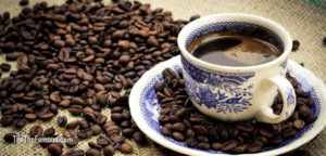 Know about kopi luwak